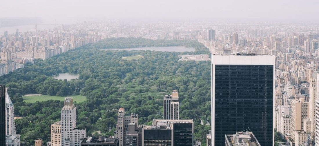 If you move cross country to New York, you can visit city's central park